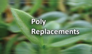 Poly Replacements